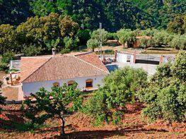 Haus in verkauf in Jubrique - 358829325