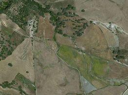Grundstück in verkauf in Ronda - 355727509