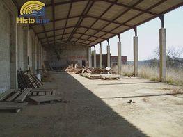 Foto - Nave industrial en venta en calle Torreendome, Torre Endoménech - 181976801