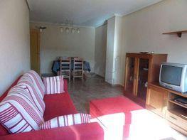 Sam_7905 (large).jpg - Piso en alquiler en Cuenca - 387931697
