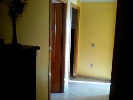 Piso en alquiler en Melilla - 290316180