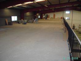 Interior - Nave industrial en venta en Mairena del Aljarafe - 23437033