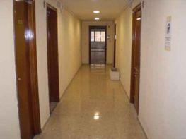 Pasillo - Oficina en alquiler en calle Nervion, La Buhaira en Sevilla - 36651333