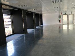 Oficina en alquiler en calle Diagonal, Pedralbes en Barcelona - 263553410