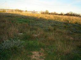 Grundstück in verkauf in carretera De Pedralba, Llíria - 13908752