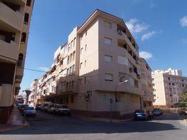 Vistas - Piso en venta en calle Arnas, Guardamar del Segura - 121494882