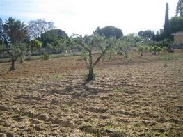 Piece of land for sale in Olivares - 388967778