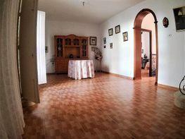 Casa adosada en alquiler en Olivares