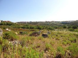 Grundstück in verkauf in San Roque - 176897431