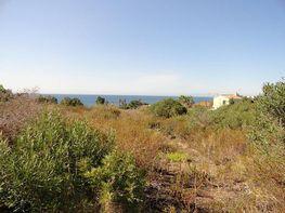 Grundstück in verkauf in San Roque - 176897461