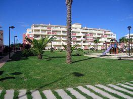 Apartament en lloguer de temporada calle Coll Verd, Las Marinas - Les Marines  a Dénia - 201105267