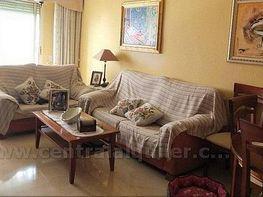 Imagen0 - Piso en alquiler opción compra en calle Ancha de Castelar, San Vicente del Raspeig/Sant Vicent del Raspeig - 383004273