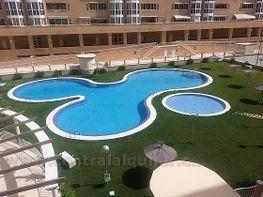 Imagen0 - Piso en alquiler opción compra en calle Torero Jose Maria Manzanares, San Blas - Santo Domingo en Alicante/Alacant - 383004708