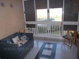 Imagen0 - Piso en alquiler opción compra en calle Musico Agustin Bertomeu, San Gabriel en Alicante/Alacant - 412652440