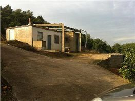 Landgut in verkauf in Alzira - 331339598