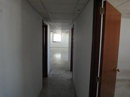Detalles - Oficina en alquiler en Av. Ciencias-Emilio Lemos en Sevilla - 213038698