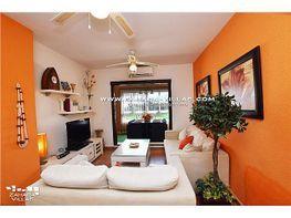 Apartment in verkauf in Zahara de los atunes - 395051004