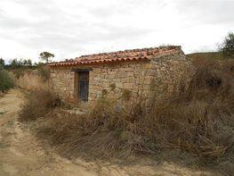 Finca rústica en venta en urbanización Coscollogues, Pobla de Massaluca, la - 128437139
