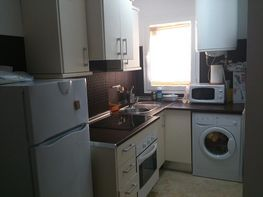 Apartamento en alquiler de temporada en calle Algeciras, Tarifa - 371237427