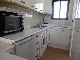 Apartamento en alquiler de temporada en calle Almadraba, Tarifa - 375431092