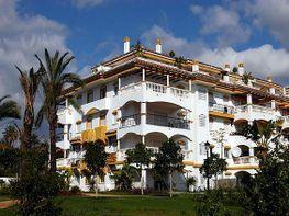 Bajo en alquiler en Nueva Andalucía-Centro en Marbella - 415759684