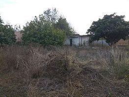 Parcel·la en venda calle Los Llanos, La Banda a Chiclana de la Frontera - 354192356