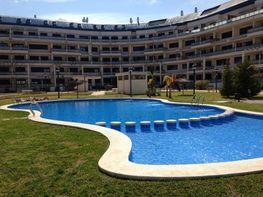 Piscina - Apartamento en alquiler en carretera Denia a Javea, El Puerto en Dénia - 95534219