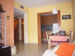 flat for rent in calle folch i torres, barrio sant lluís in palafolls