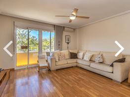 flat for sale in calle pedro maltes, centro in san vicente del raspeig/sant vicent del raspeig