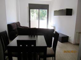 Comedor - Piso en alquiler en calle Migdia, Torroella de Montgrí - 119525057