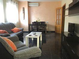 flat for rent in calle la encina, alhama de murcia in alhama de murcia