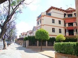 Pisos de particulares en alquiler en sevilla y alrededores for Alquiler de pisos en sevilla centro particulares