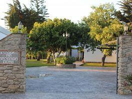 Apartamento en alquiler en barrio Nuevo, Conil de la Frontera