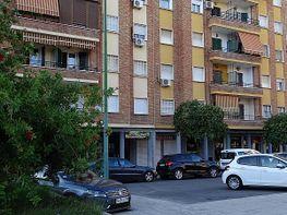 petit appartement de location à plaza rafael salgado, sector sur  - la palmera - reina mercedes à sevilla