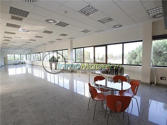 Oficina en alquiler en Dehesa de Navalcarbon-Montecillo en Rozas de Madrid (Las) - 399667640
