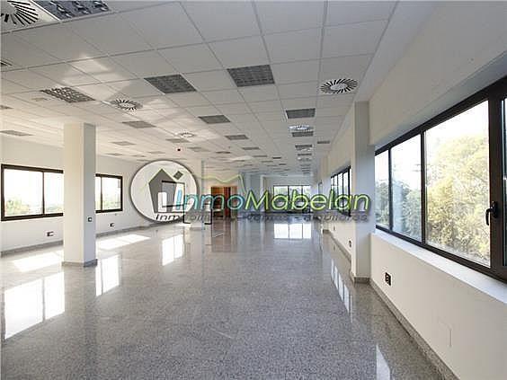 Oficina en alquiler en Dehesa de Navalcarbon-Montecillo en Rozas de Madrid (Las) - 399667643