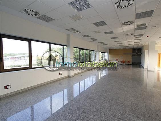 Oficina en alquiler en Dehesa de Navalcarbon-Montecillo en Rozas de Madrid (Las) - 399667655