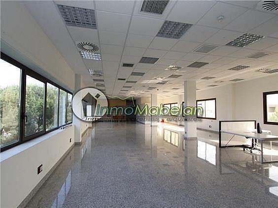 Oficina en alquiler en Dehesa de Navalcarbon-Montecillo en Rozas de Madrid (Las) - 399667658