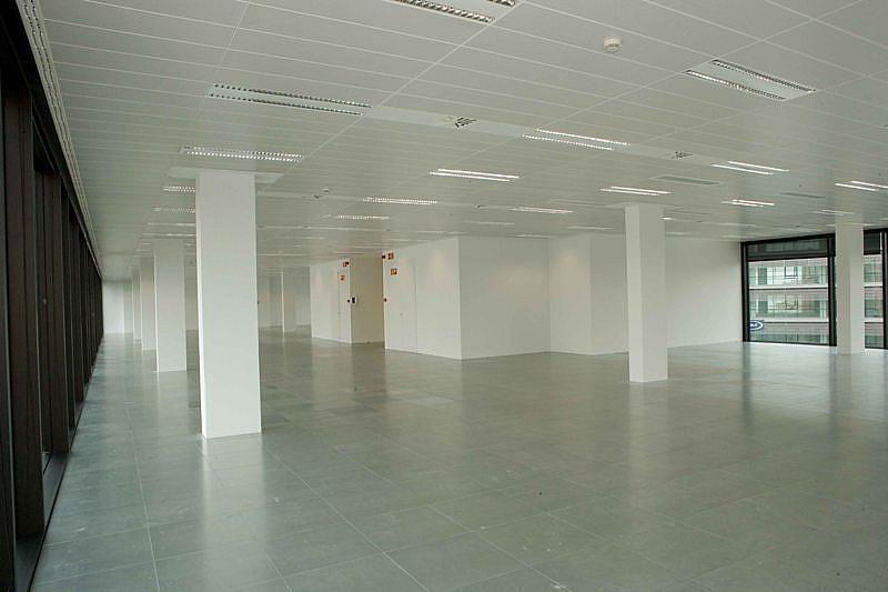 Despacho - Oficina en alquiler en calle Diagonal, Diagonal Mar en Barcelona - 322071879