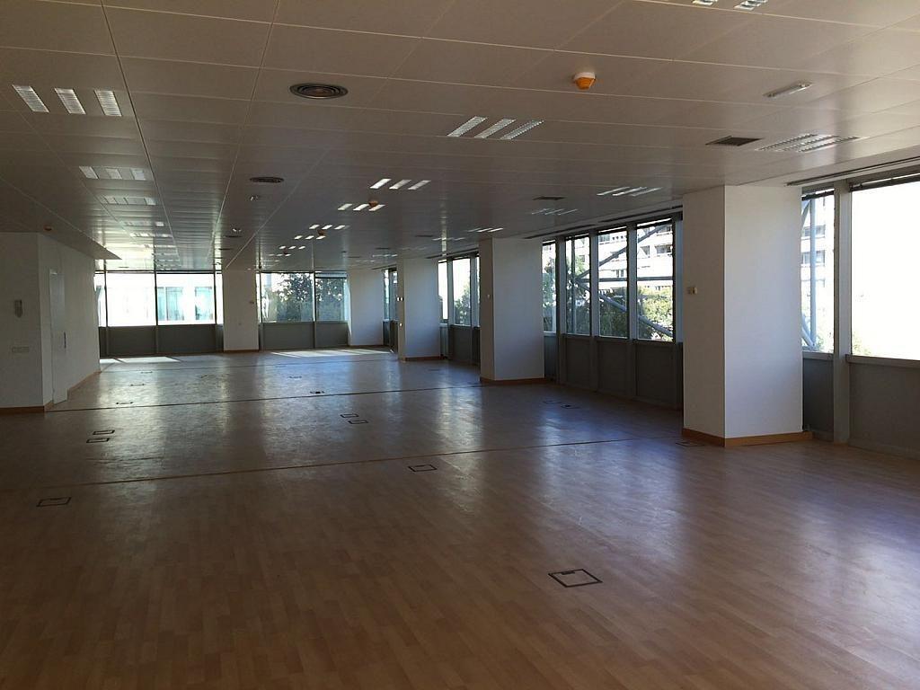 Despacho - Oficina en alquiler en calle Tarragona, Eixample esquerra en Barcelona - 323038290