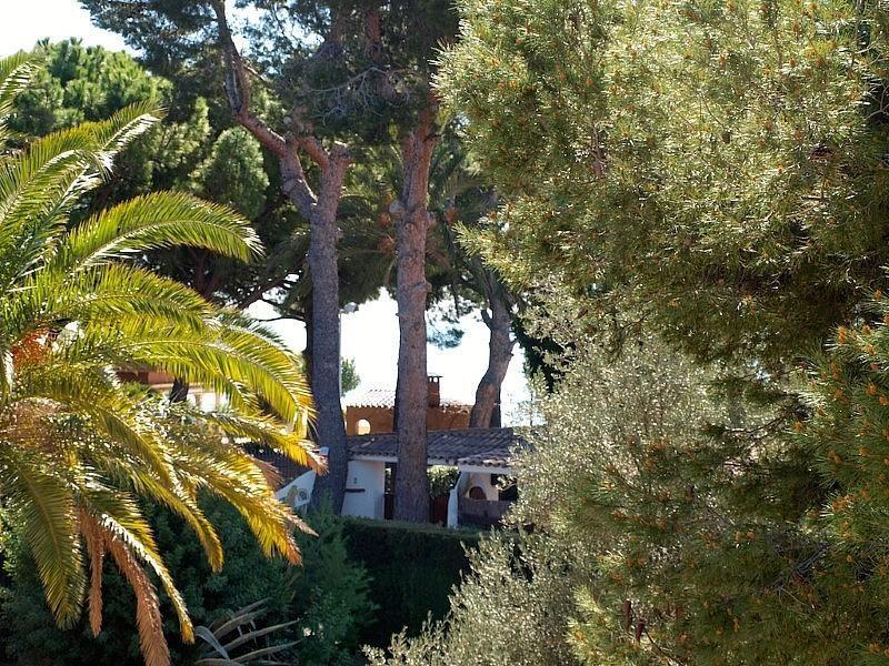 P3079963.JPG - Villa en venta en calle Urbanizacion Las Playetas, Oropesa del Mar/Orpesa - 324021405