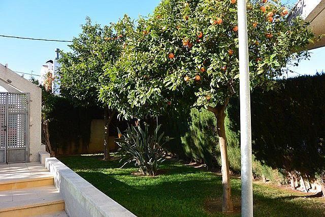 Zonas comunes - Apartamento en alquiler de temporada en calle Martin Alonso Pinzon, Cambrils mediterrani en Cambrils - 262453548