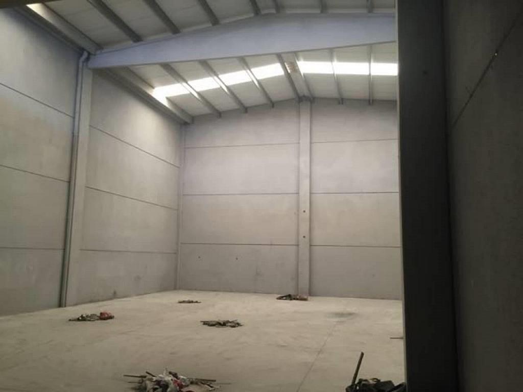 Nave industrial en alquiler en calle Vial Interior Ii, Perafort - 404914083