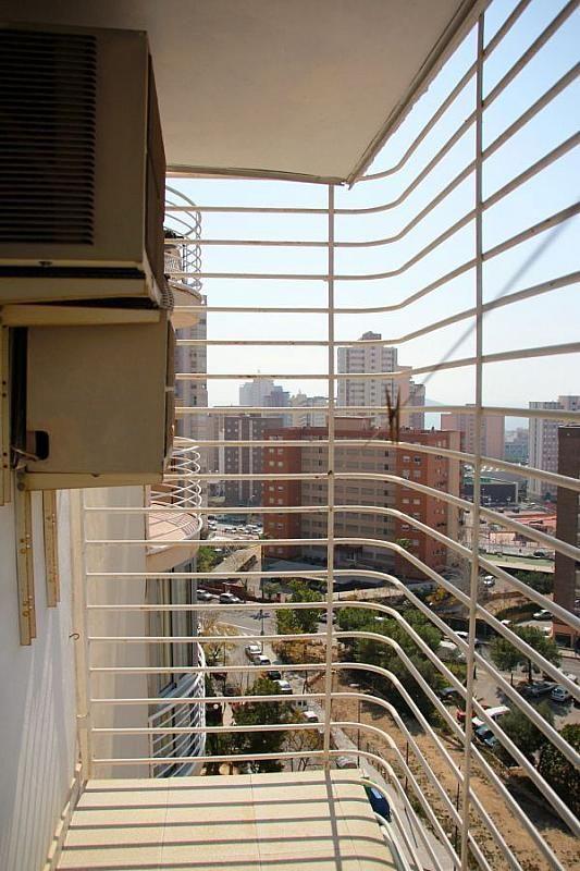 Imagen sin descripción - Apartamento en venta en Benidorm - 226113183