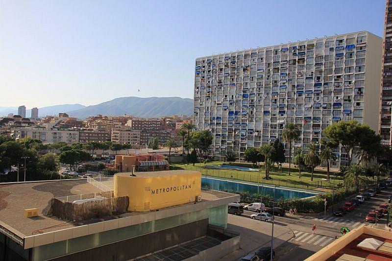 Imagen sin descripción - Apartamento en venta en Benidorm - 226113186