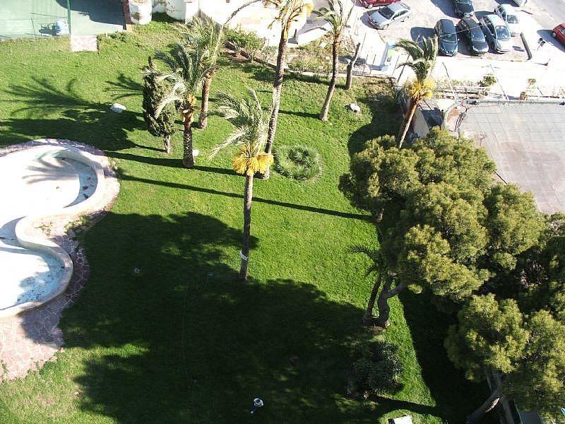 Imagen sin descripción - Apartamento en venta en Benidorm - 226113192