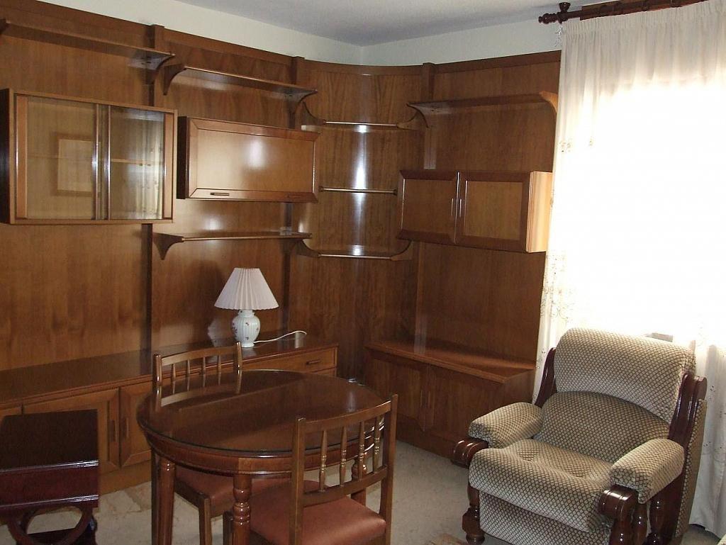 Salón - Piso en alquiler en calle Constitución, Centro en Granada - 186282795
