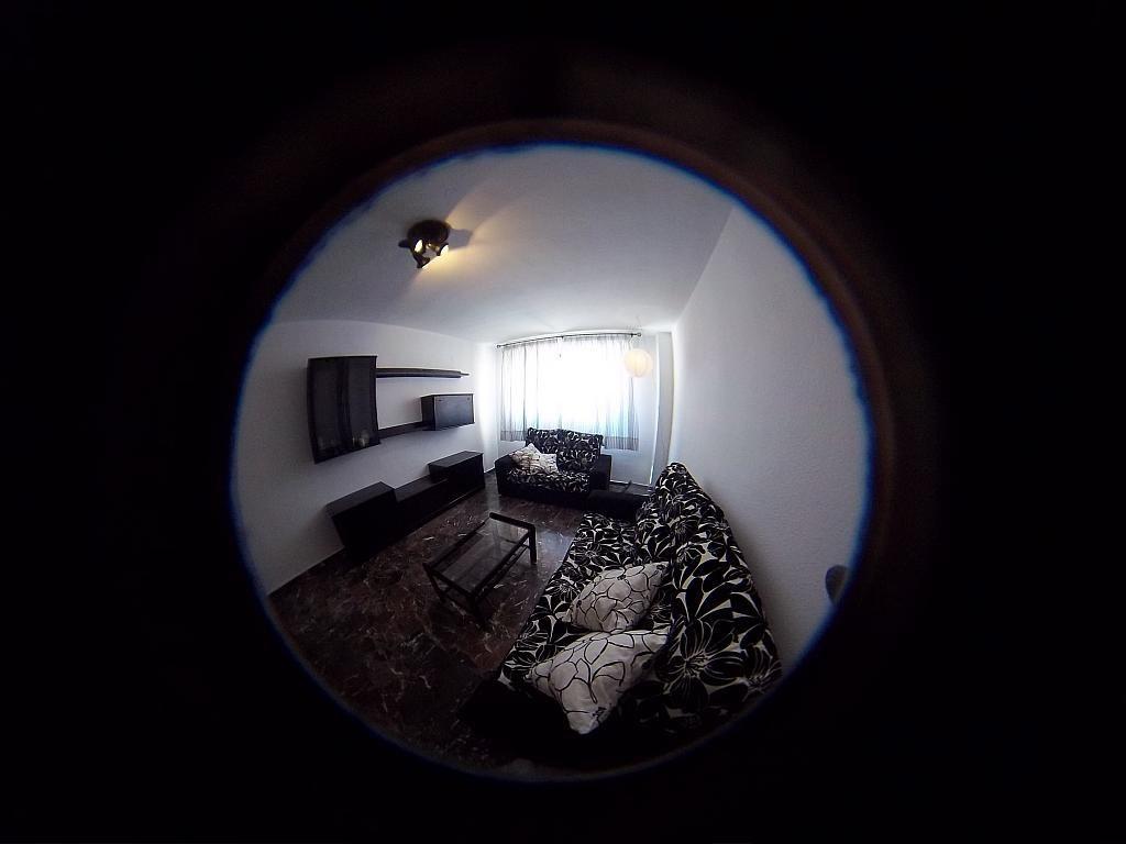 Salón - Piso en alquiler en calle Tortola, Centro en Granada - 203138623