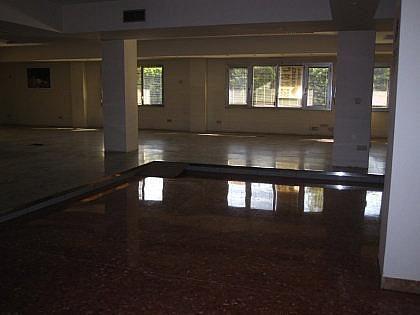 Foto 10 - Oficina en alquiler en La Malagueta-La Caleta en Málaga - 241299433