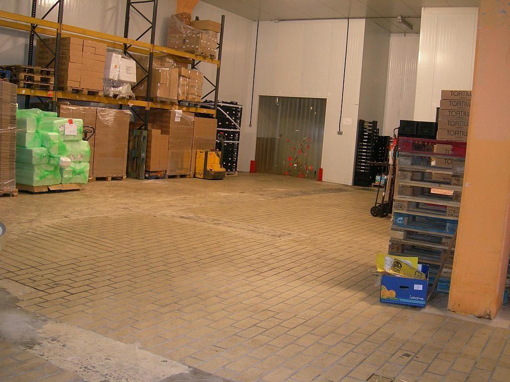 Nave industrial en alquiler en calle Empordà, Sant Quirze del Vallès - 260965351